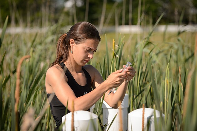 woman holding test tube in field